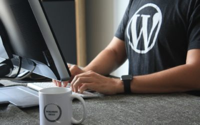 Datos fantásticos y estadísticas sobre WordPress 2020