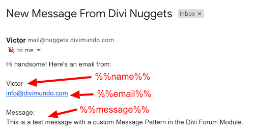 Divi form Message Pattern explained
