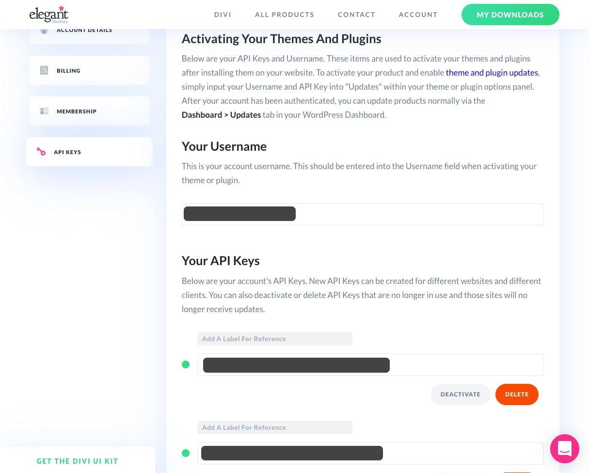 Manage your Divi API Keys
